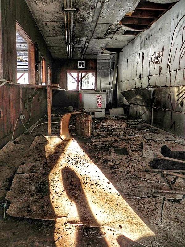 Peek Inside The Old Catskill Game Farm Photos